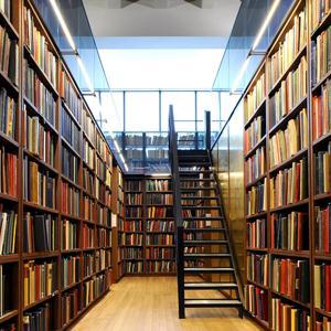 Библиотеки Паланы